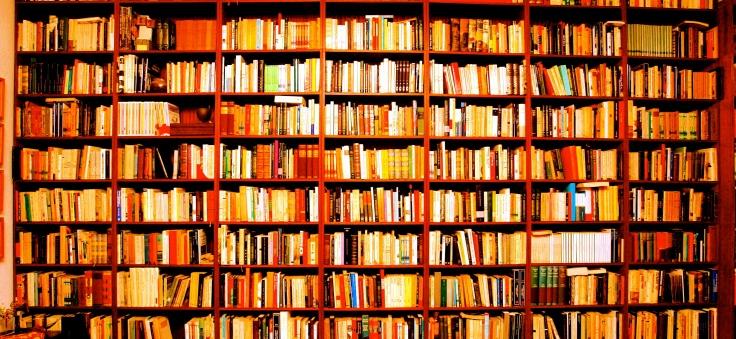 Biblioteca_Frikarte